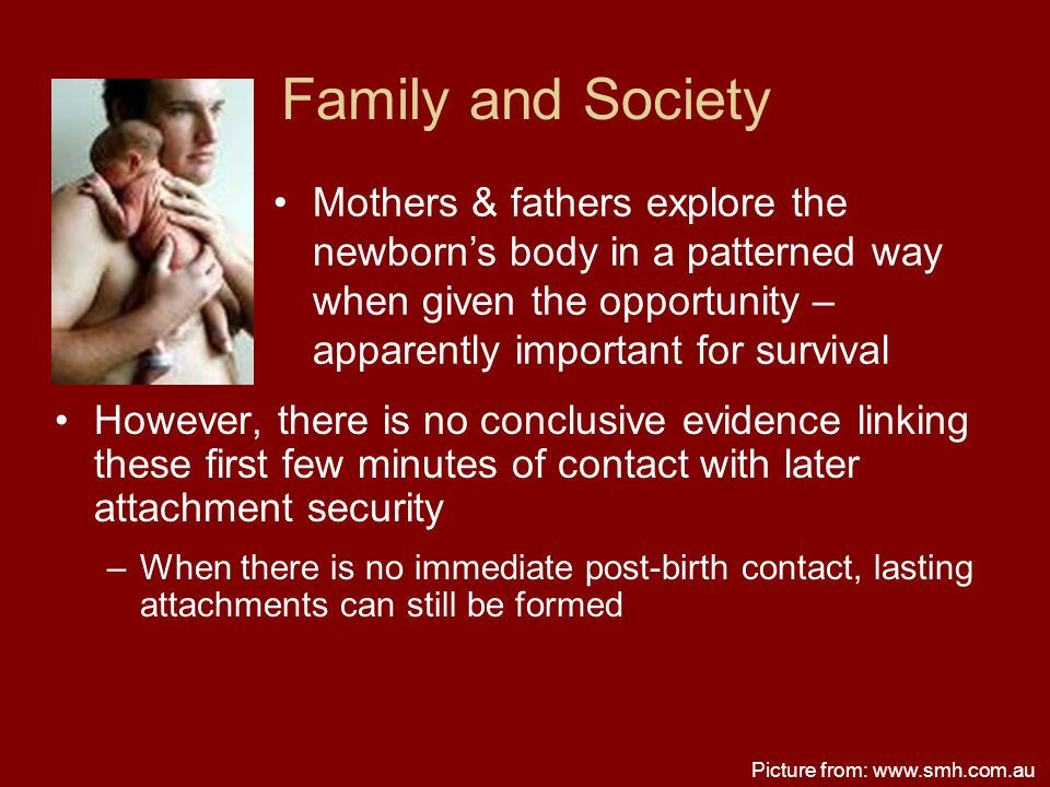 Family and Society Mothers & fathers explore the newborn's body in a patterned way when given the opportunity – apparently important for survival.