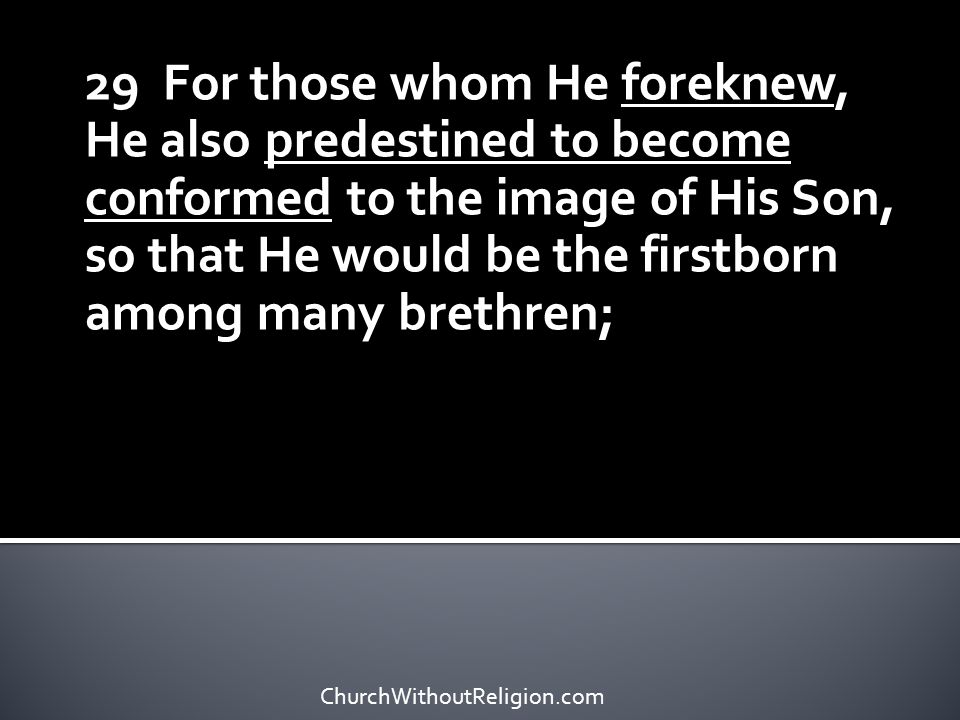 29 For those whom He foreknew, He also predestined to become conformed to the image of His Son, so that He would be the firstborn among many brethren;