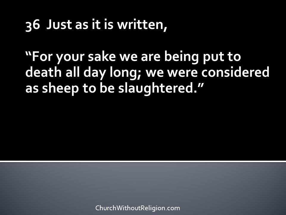 36 Just as it is written, For your sake we are being put to death all day long; we were considered as sheep to be slaughtered.