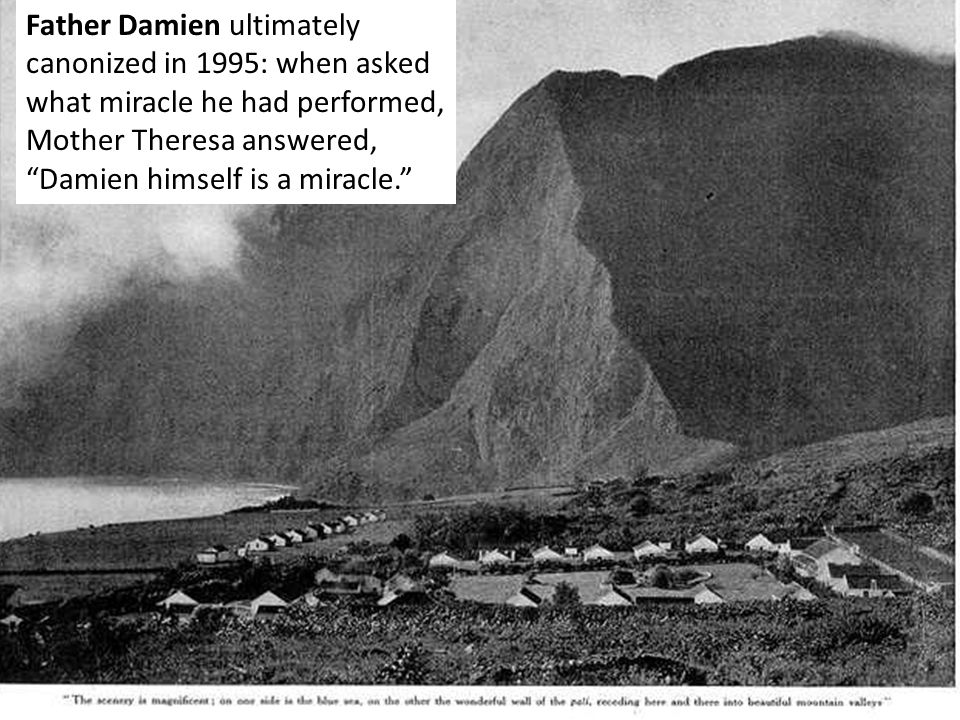 Father Damien ultimately canonized in 1995: when asked what miracle he had performed, Mother Theresa answered, Damien himself is a miracle.
