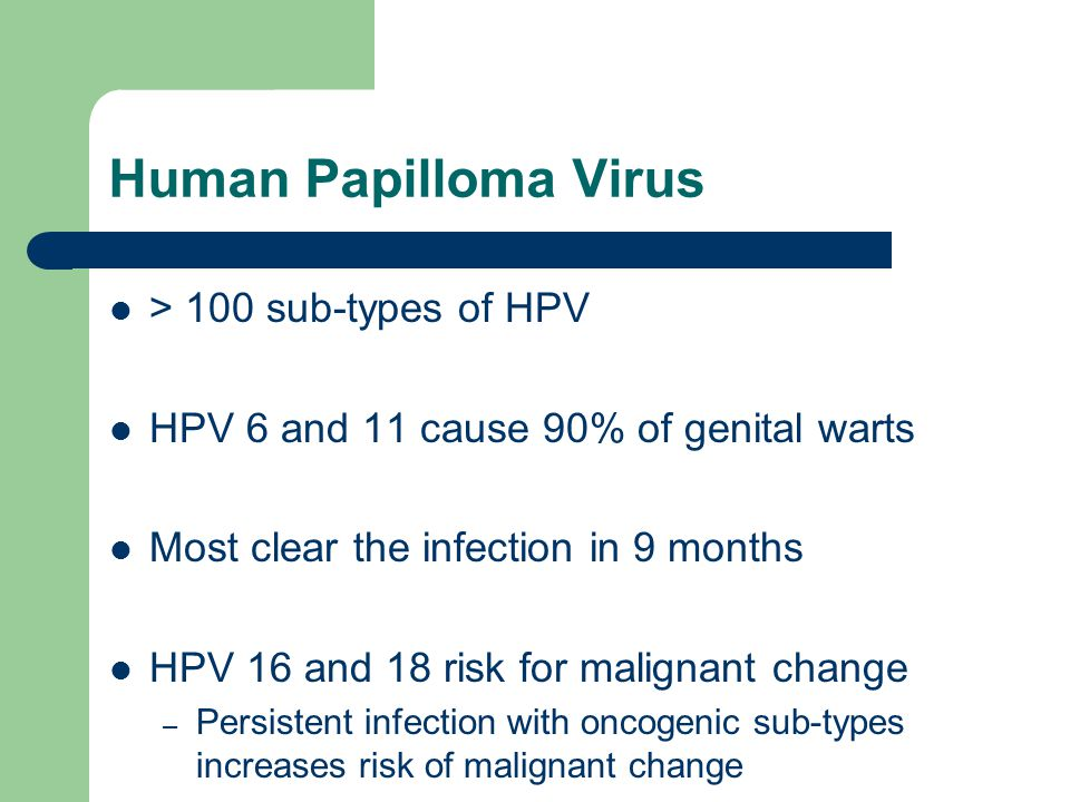 Human Papilloma Virus > 100 sub-types of HPV
