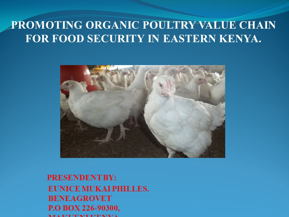 PROMOTING ORGANIC POULTRY VALUE CHAIN FOR FOOD SECURITY IN EASTERN KENYA.