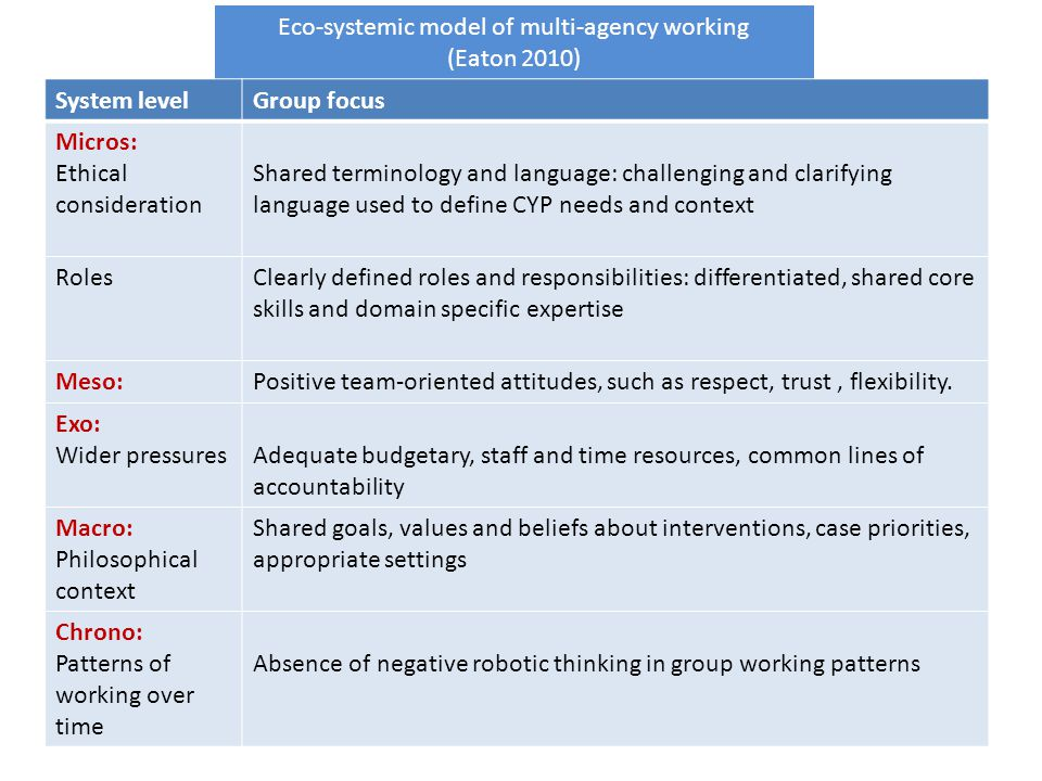 Eco-systemic model of multi-agency working