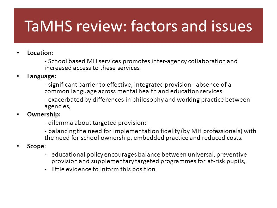 TaMHS review: factors and issues