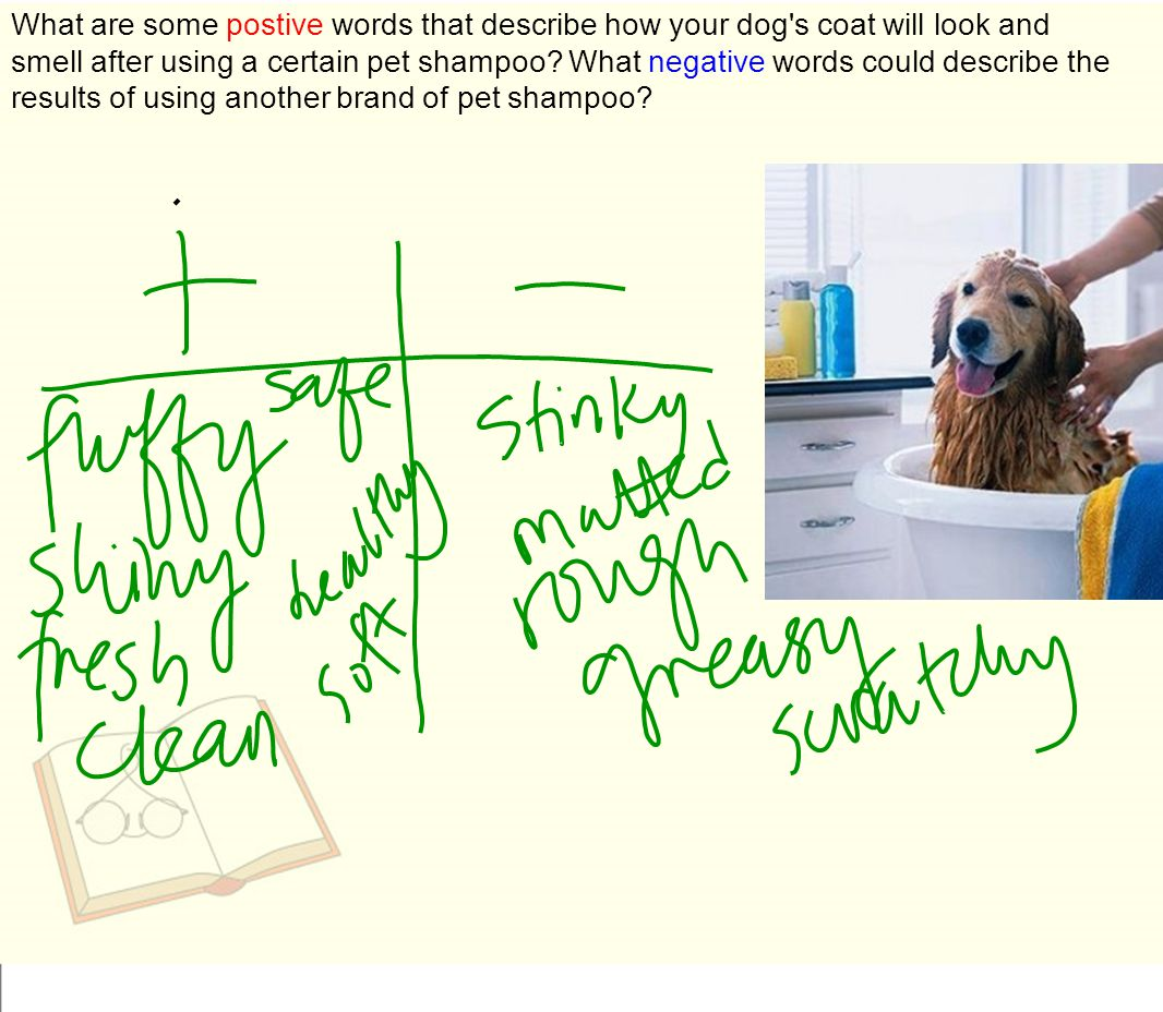 What are some postive words that describe how your dog s coat will look and smell after using a certain pet shampoo.