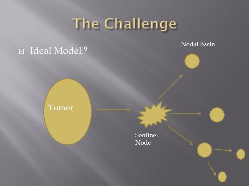 The Challenge Nodal Basin Ideal Model:9 Tumor Sentinel Node