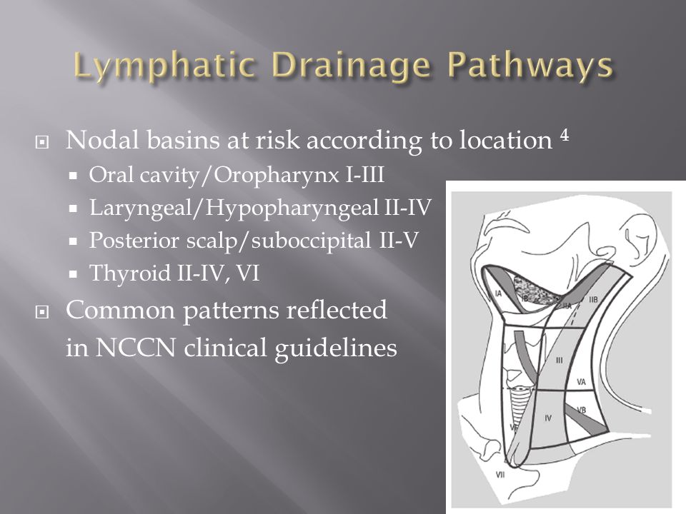 Lymphatic Drainage Pathways