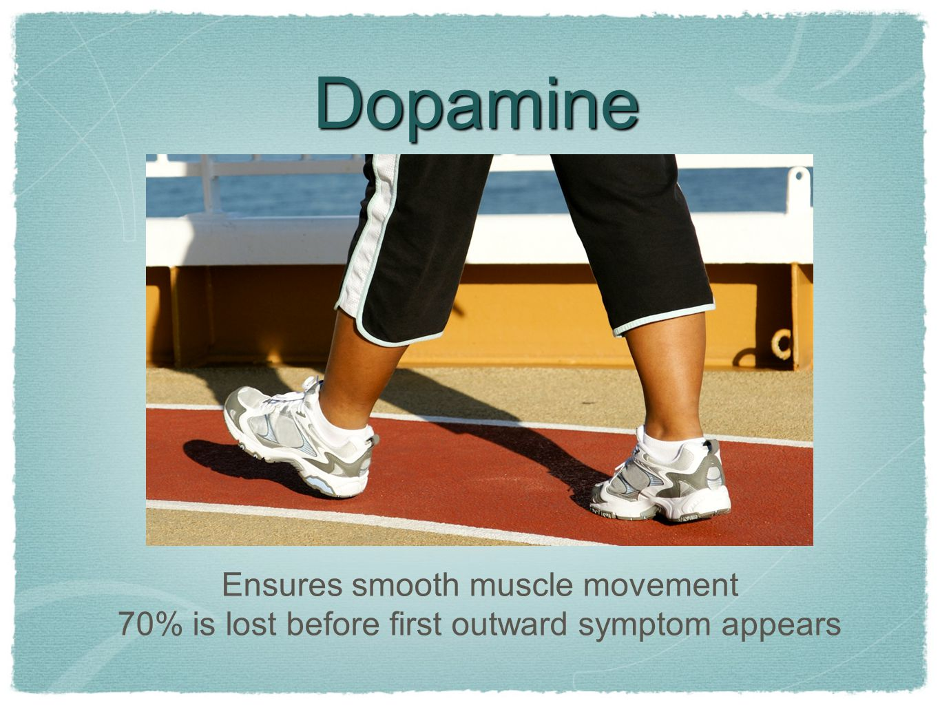 Dopamine Ensures smooth muscle movement