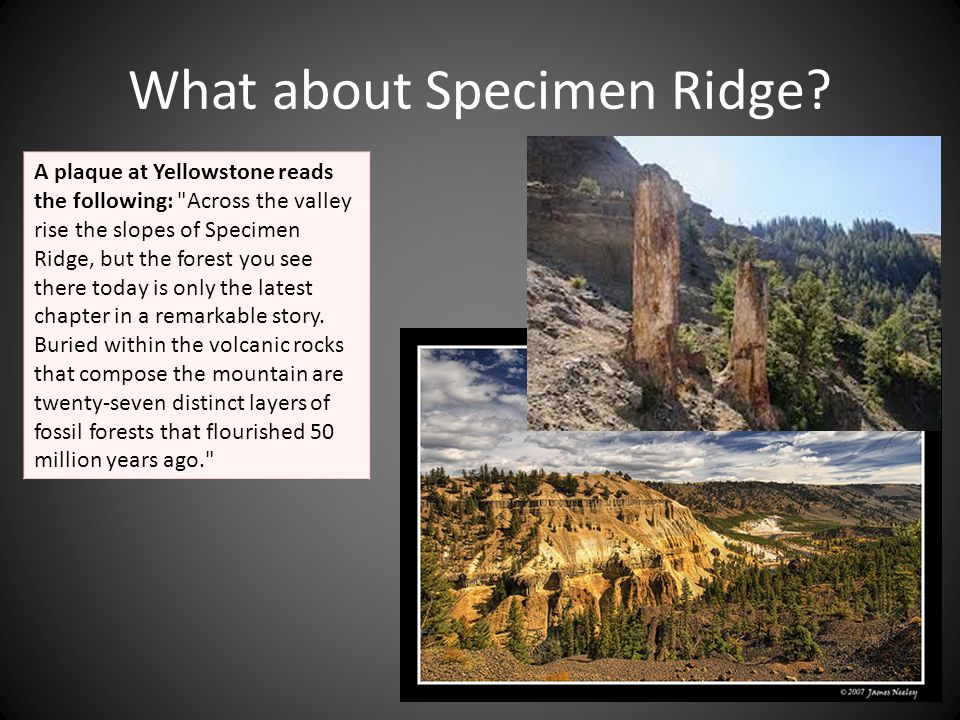 What about Specimen Ridge