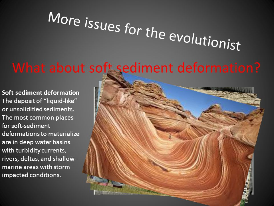More issues for the evolutionist