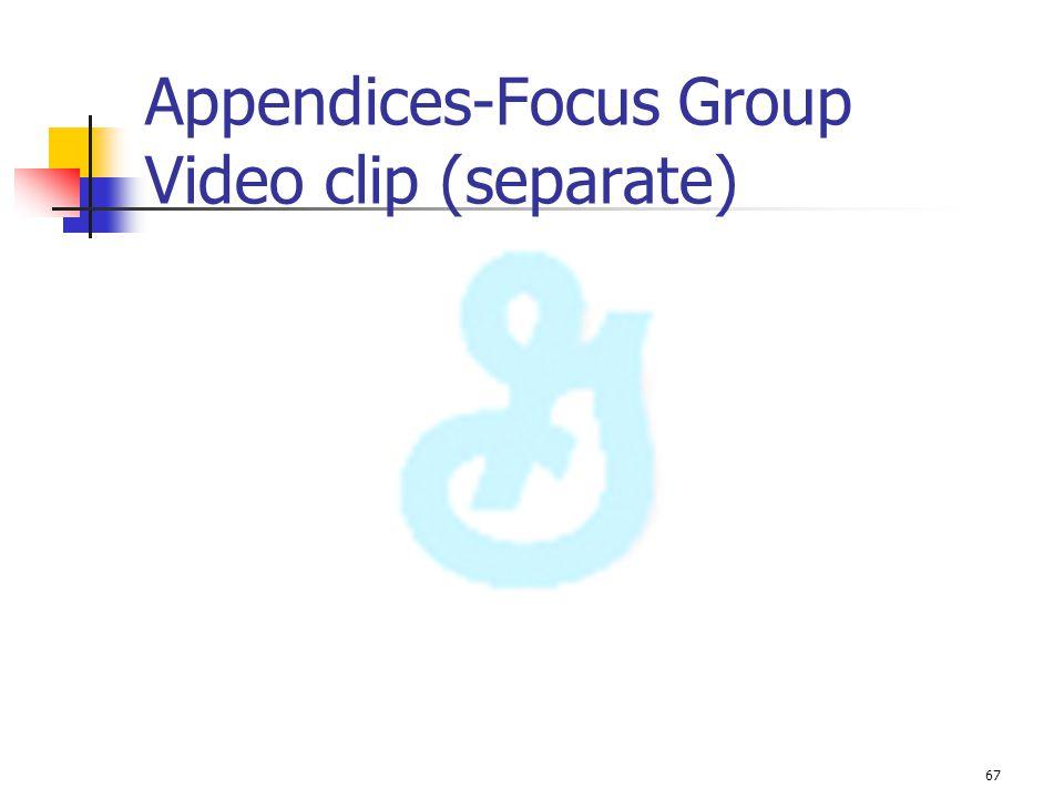 Appendices-Focus Group Video clip (separate)