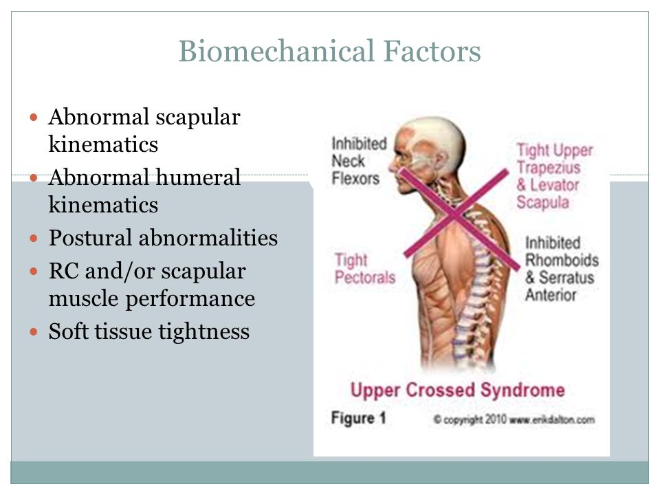 Biomechanical Factors