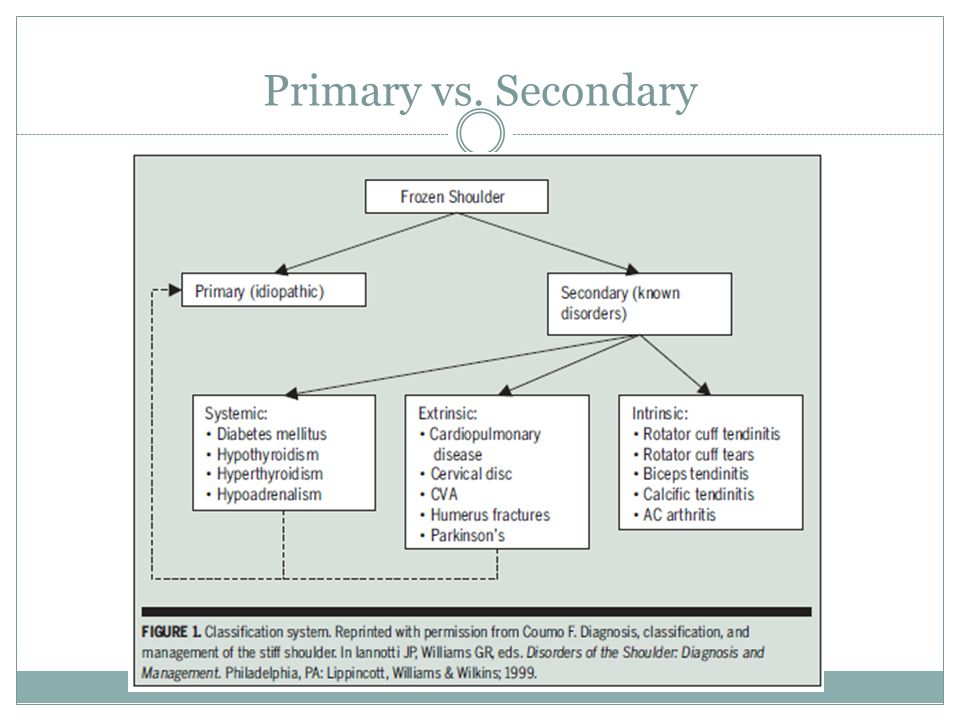 Primary vs. Secondary