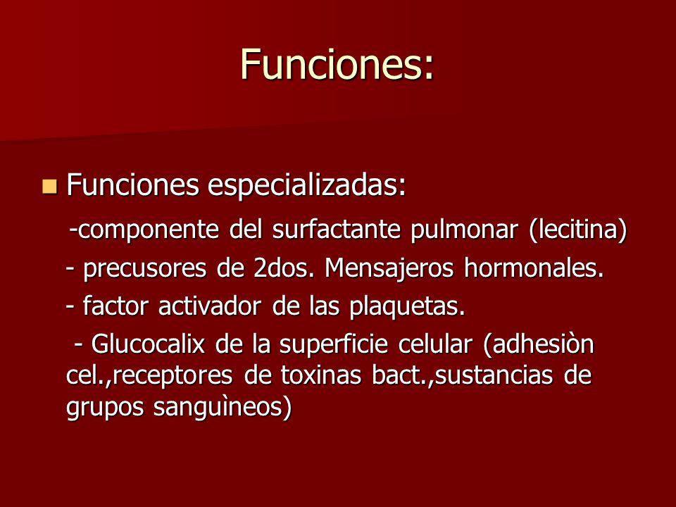 Funciones: Funciones especializadas: