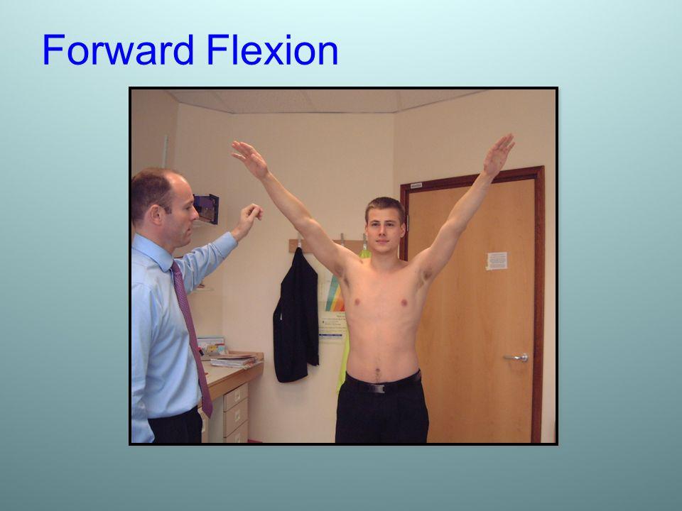 Forward Flexion