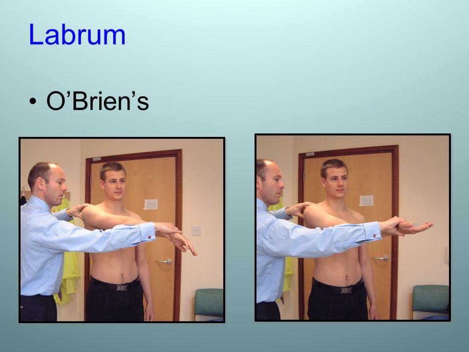 Labrum O'Brien's