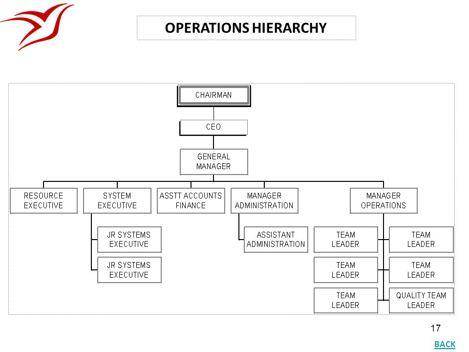 OPERATIONS HIERARCHY BACK