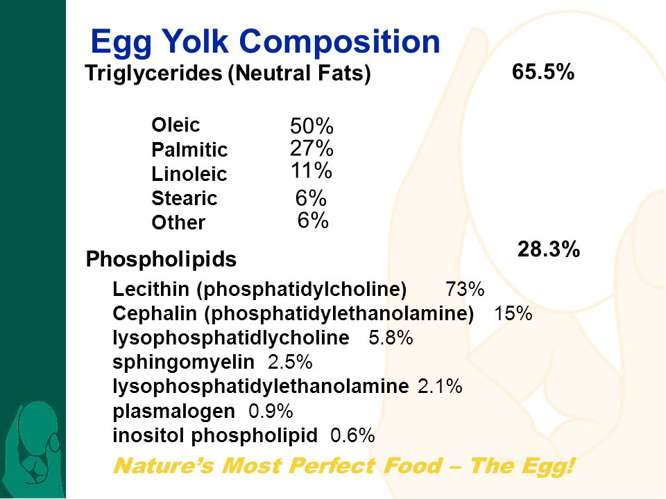 Egg Yolk Composition Triglycerides (Neutral Fats) 65.5% 50% 27% 11% 6%