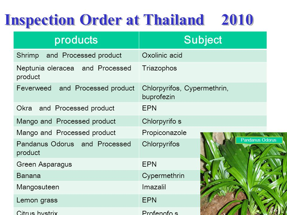 Inspection Order at Thailand 2010