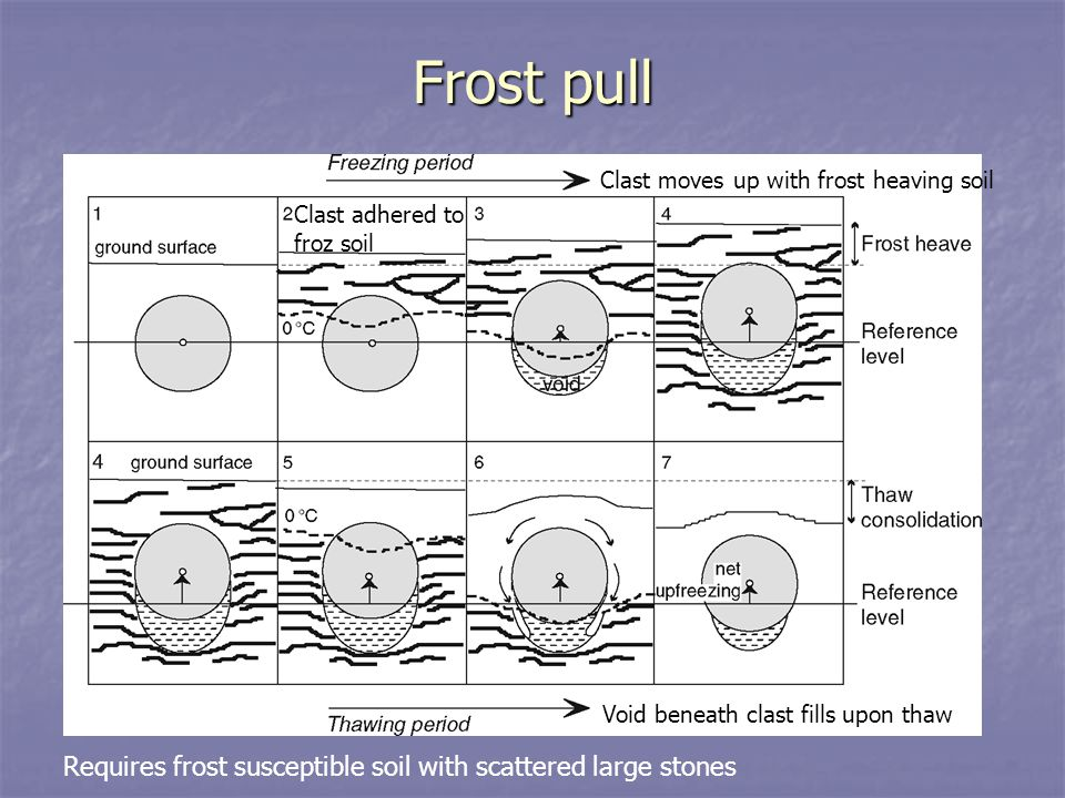 Frost pull Requires frost susceptible soil with scattered large stones