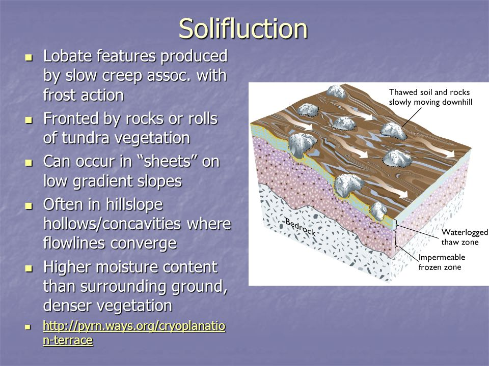 Solifluction Lobate features produced by slow creep assoc. with frost action. Fronted by rocks or rolls of tundra vegetation.