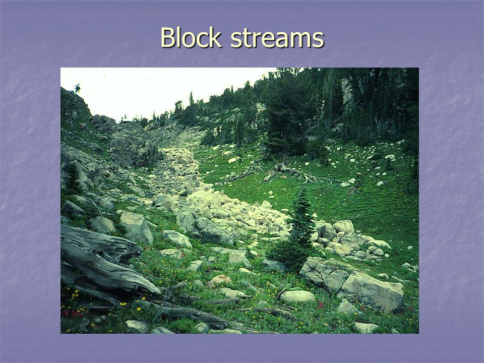 Block streams ESCI 307 Fall 2003 Lecture 18