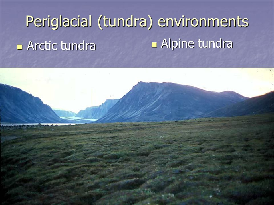 Periglacial (tundra) environments