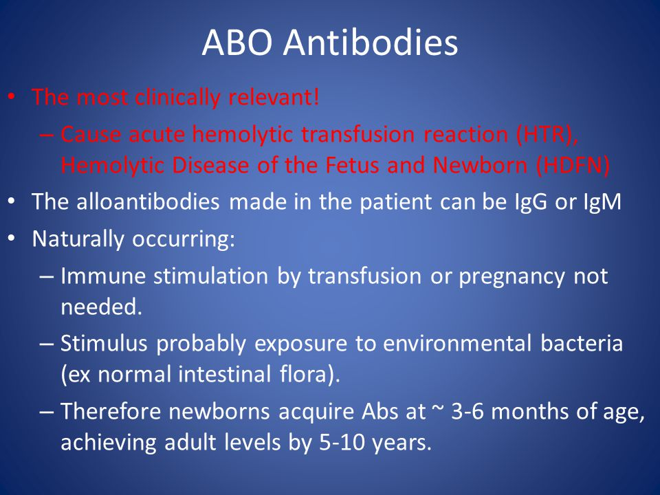 ABO Antibodies The most clinically relevant!
