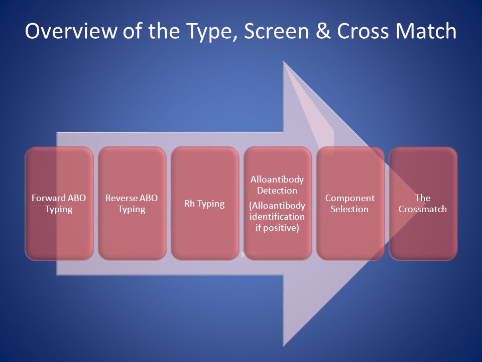 Overview of the Type, Screen & Cross Match