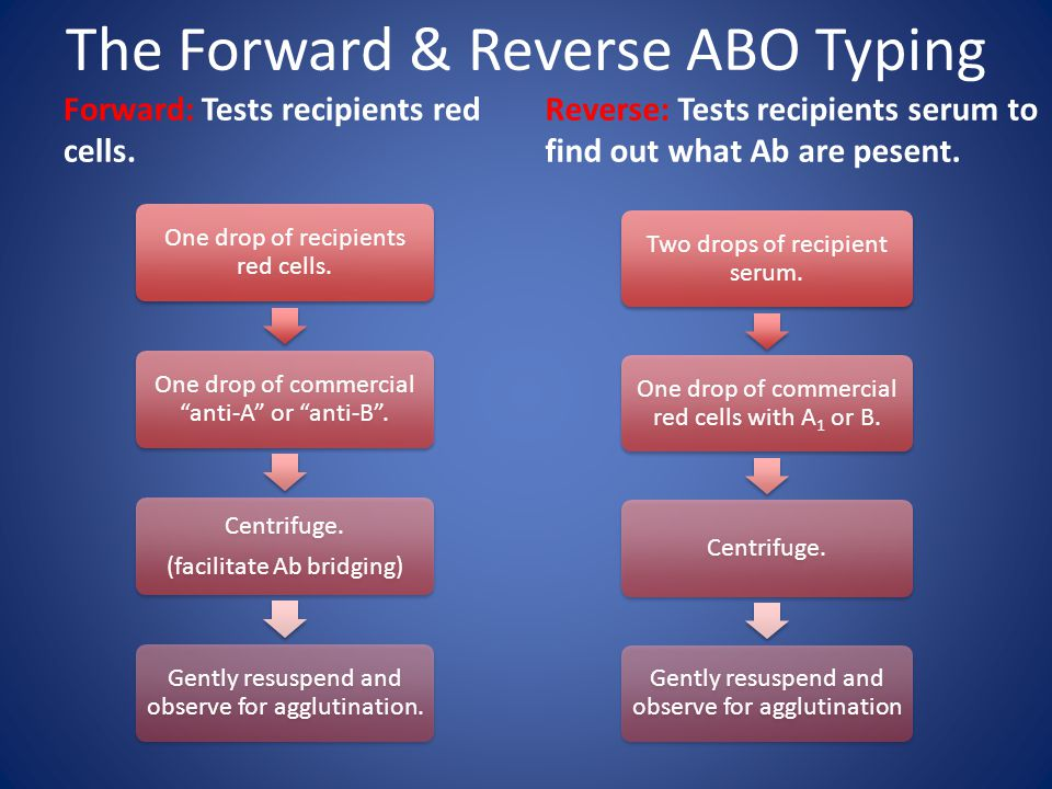 The Forward & Reverse ABO Typing