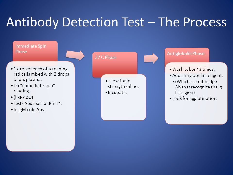 Antibody Detection Test – The Process