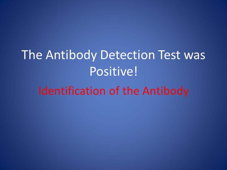 The Antibody Detection Test was Positive!