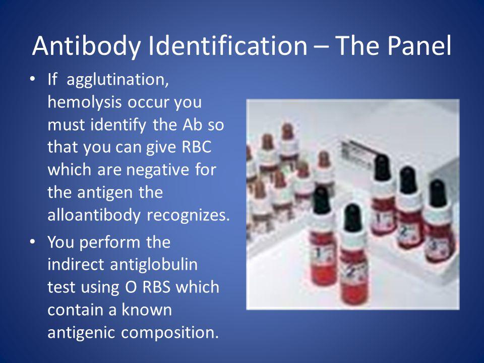 Antibody Identification – The Panel