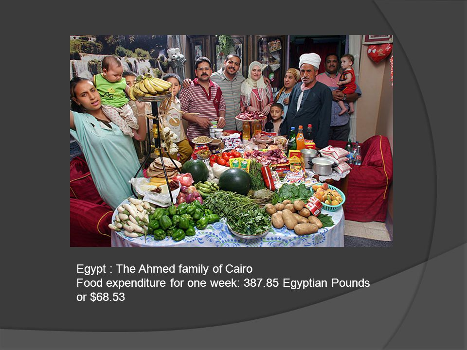 Egypt : The Ahmed family of Cairo Food expenditure for one week: 387