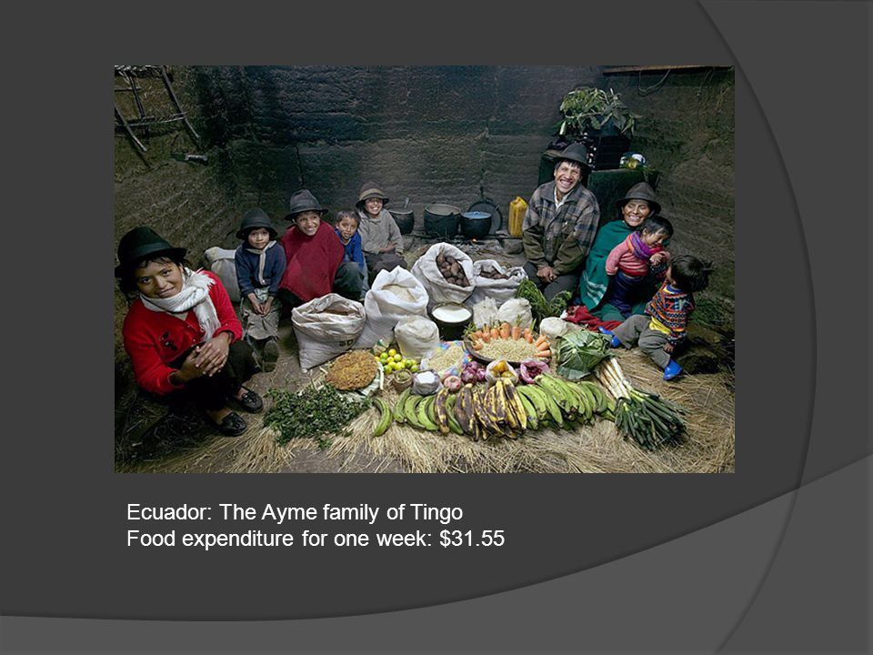 Ecuador: The Ayme family of Tingo Food expenditure for one week: $31