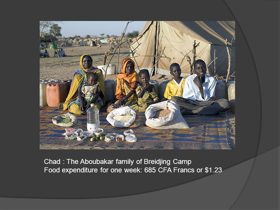 Chad : The Aboubakar family of Breidjing Camp Food expenditure for one week: 685 CFA Francs or $1.23