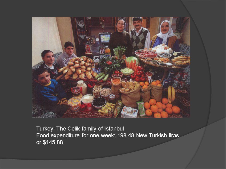 Turkey: The Celik family of Istanbul