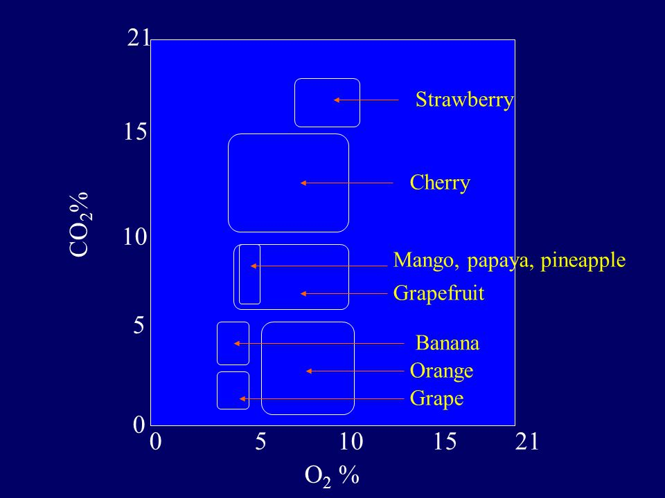 21 15 CO2% 10 5 5 10 15 21 O2 % Strawberry Cherry