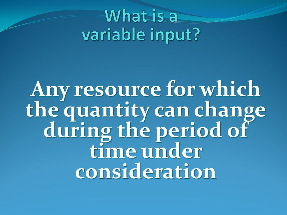 What is a variable input