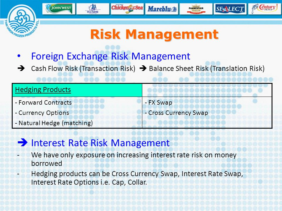 Risk Management Foreign Exchange Risk Management