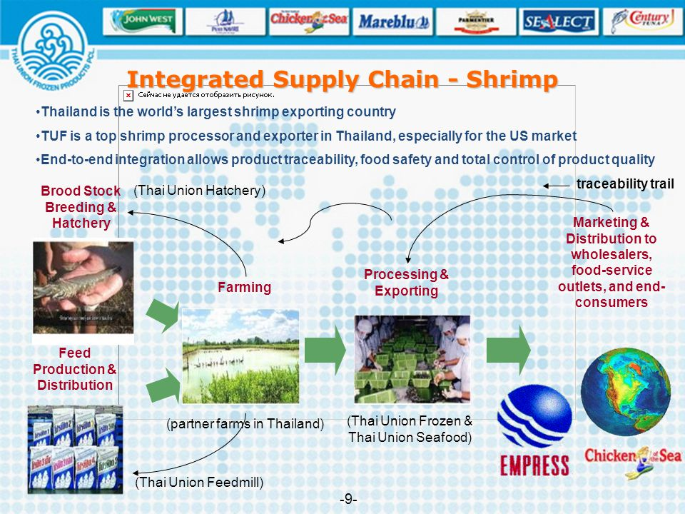 Integrated Supply Chain - Shrimp