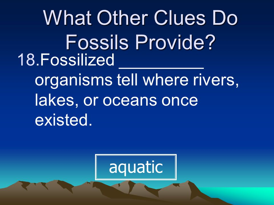 What Other Clues Do Fossils Provide