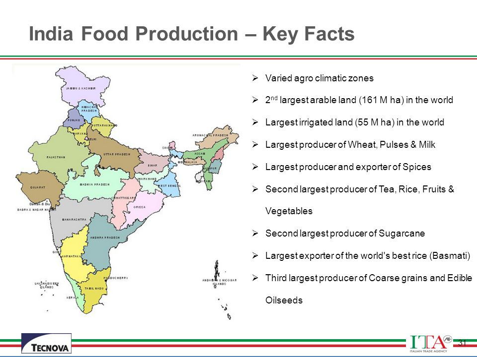 India Food Production – Key Facts