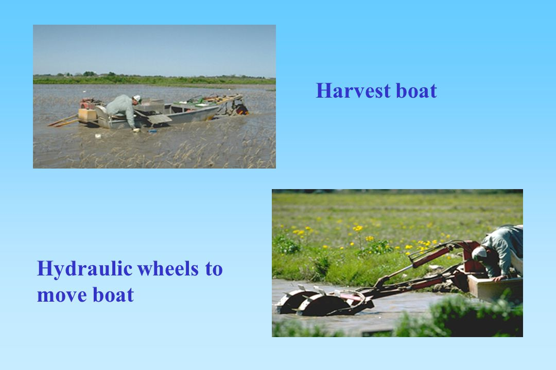 Harvest boat Hydraulic wheels to move boat