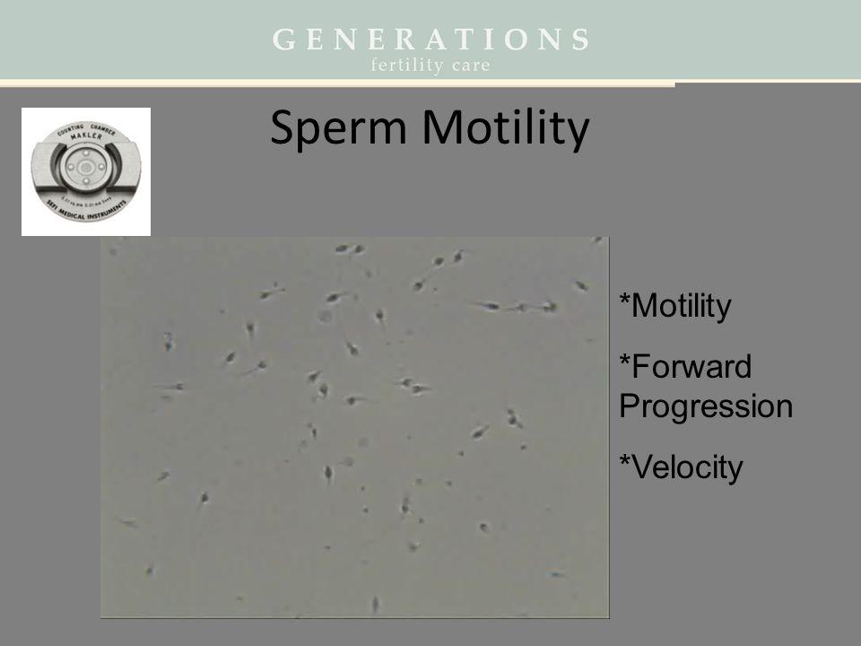 Sperm Motility *Motility *Forward Progression *Velocity