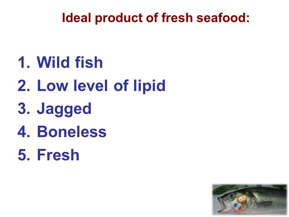 Ideal product of fresh seafood: