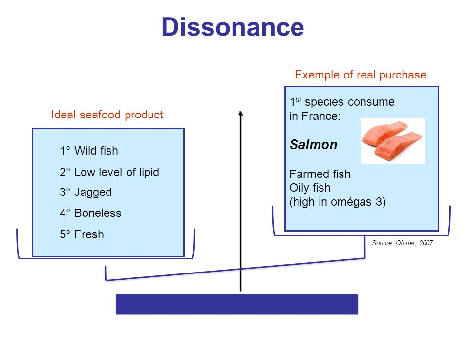 Dissonance Salmon Exemple of real purchase 1st species consume