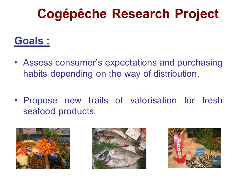 Cogépêche Research Project