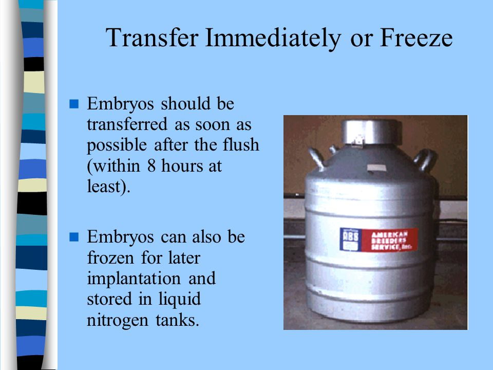 Transfer Immediately or Freeze