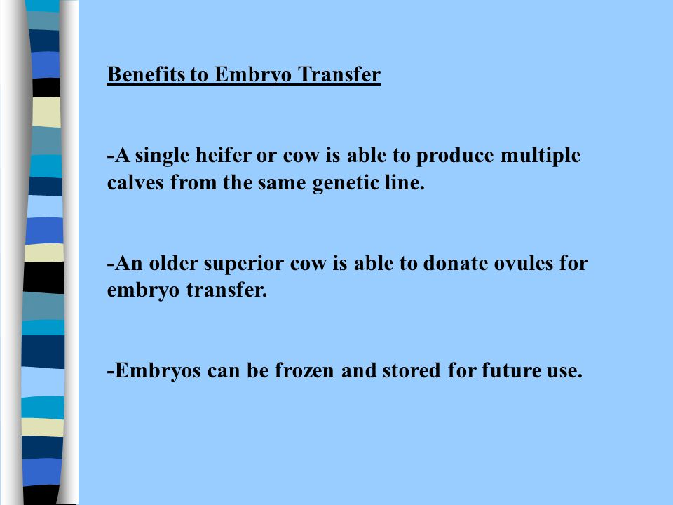 Benefits to Embryo Transfer